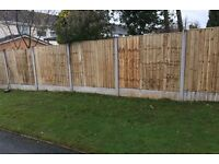 🌎New Straight Top Feather Edge Fence Panels • Excellent Quality • Timber