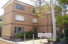 Spacious 1 Bedroom Strata Unit in Convenient Location Strathfield Strathfield Area Preview