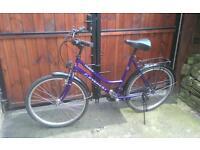 Ladies everest hybrid bike