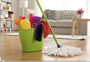 Reliable experienced house cleaner