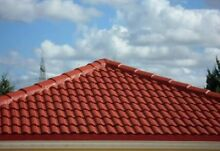 Roof painting and cleaning high quality service, cheap , free quote Camden Camden Area Preview