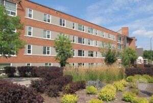 Spacious 2 Bed Pet Friendly Apartment For Sublet