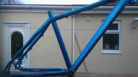 Carrera mtb frame