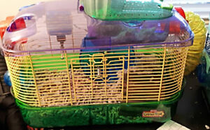 Hamsters with cages! 20$ for Both, or 15$ ea.