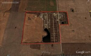 SCOUT LAKE FEED LOT RM OF WILLOW BUNCH #42 FOR SALE Regina Regina Area image 1
