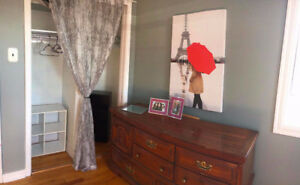 Roommate Wanted - Everything Included/Fully Furnished