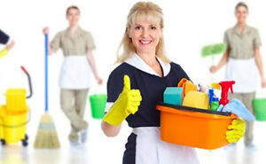 House Yard and Carpet Cleaning for Houses Apartments and Offices