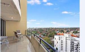 Beautiful Room for Rent in Parramatta CBD