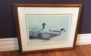 Loons and Chicks Print by Lissa Calvert, Limited Edition