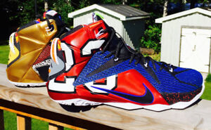 Size 13 LeBron twelve 'What The' Never Worn without box