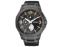 Citizen Eco-Drive Military Black Ion Plated Steel 100m Watch
