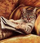 ChatCat Books & Prints