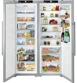 American fridge freezer