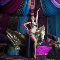 Professional Bellydancers, Cirque Artists and more!