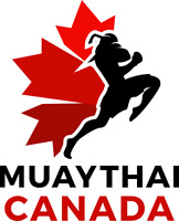 1 on 1 Muay Thai lessons