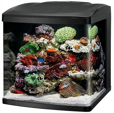 Coralife Size 32 LED BioCube Aquarium - NEW UPGRADED MODEL