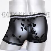 Sheer Shorts