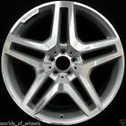 GL AMG Wheels