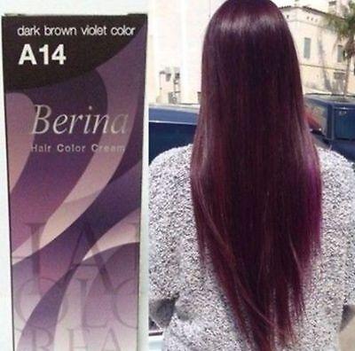 Best  Berina Hair Dye Color Cream No. A14 Dark Brown Violet Hair Color Cream