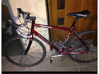 Trek 1.2 Pilot Men's Road Bike