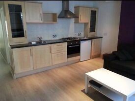 Newly refurbished flat large 2 bed flat - Fulham