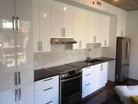Gorgeous 1 Bedroom fully furnished apartment in Outremont!