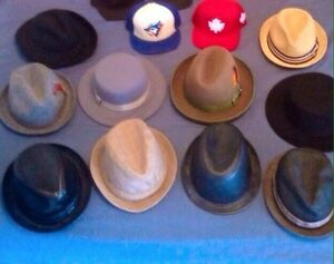 Dress hats . Full brim , fedoras and straw hats