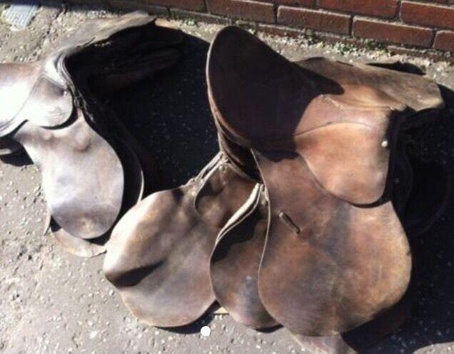 Horse saddles x 6