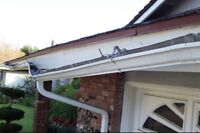 AUTHENTIC EAVESTROUGHS REPAIRS & CLEANING