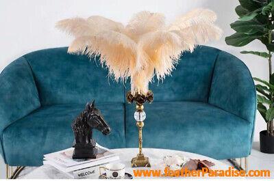 Beige Ostrich - Beige Ostrich Feathers 18-20 inch 5 Pieces (USA Seller)