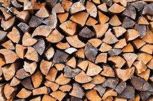 Dry Softwood Firewood