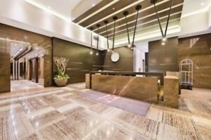 Furnished Downtown Luxury Condo for Rent