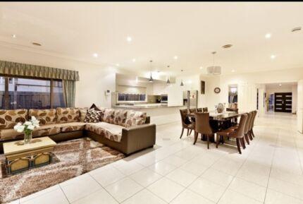 Beautiful home in Bundoora Bundoora Banyule Area Preview