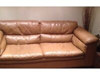 Brown Leather Sofas 3 + 2