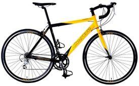 Carrera Bike with FREE Helmet + bike cover + mobile holder
