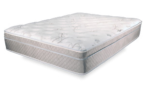 Queen size mattress with box spring and frame.