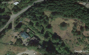 Large bright upper portion of house on 5 acres