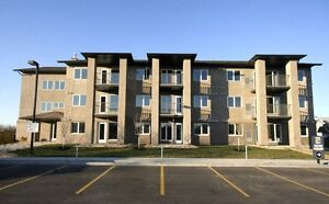 One bedroom apartment condo university of Manitoba for rent