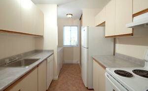Move in before the holidays! Renovated 3 bedroom condo London Ontario image 5