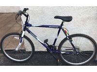 Bike for sale (South Belfast)
