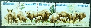POLAND STAMPS MNH 1Fi2608-12 Sc2471a-e Mi2764-68 - Bisons, 1981, clean - <span itemprop=availableAtOrFrom>Reda, Polska</span> - POLAND STAMPS MNH 1Fi2608-12 Sc2471a-e Mi2764-68 - Bisons, 1981, clean - Reda, Polska