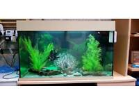 *SOLD awaiting collection* Juwel Aquarium Fish Tank