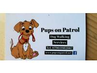 Pups On Patrol Dog Walking Services