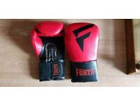 12oz Boxing Gloves brand new