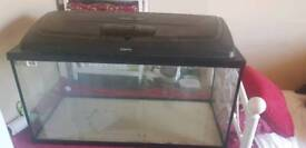 80l aquarium for sale