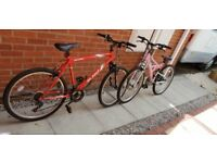 2 Adult Bikes, Red Apollo Slant and Pink TFS1 Trax both in perfect condition.