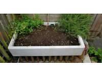 Butler sink garden planter