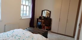 Double room in brand new home. 5 minute walk to Bishop Otter Campus.