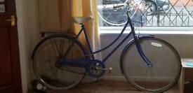Bicycle Bike Mountain Adult Road