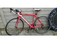 Carrera Zelos Bike 12 gears 60612 T6